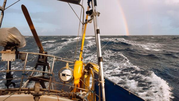 Thom D'Arcy Aries Sailing